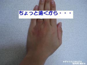 20070613114740.jpg