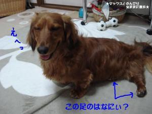 20070702093607.jpg