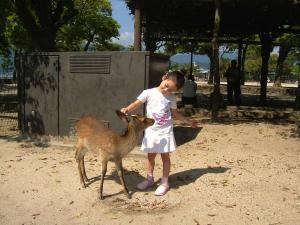 小鹿とまいちゃん
