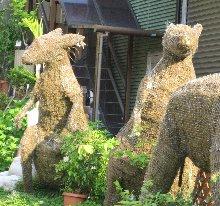 garden-kangaroo.jpg