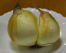 twins-onion.jpg
