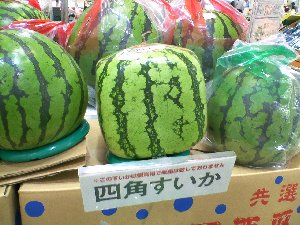 watermelon-cube.jpg