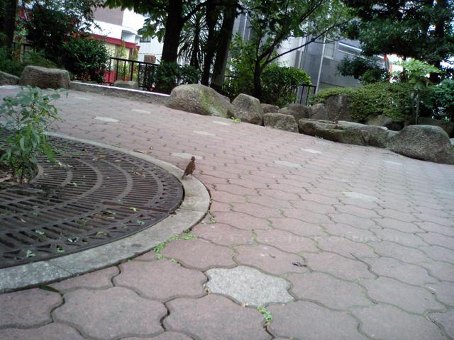 07_07_16_01.jpg