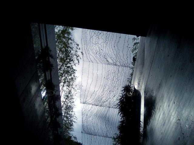 07_07_22_01.jpg