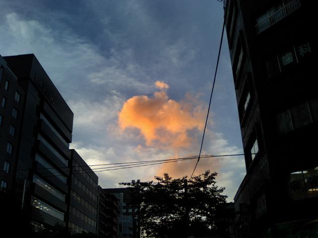 07_09_15_01.jpg