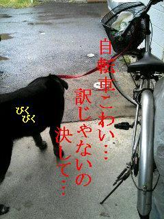 自転車怖い