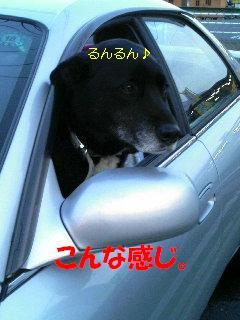 ドライビング。