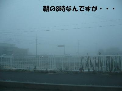20061221193109.jpg