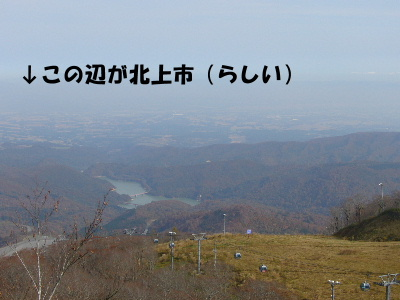 P1030421.jpg