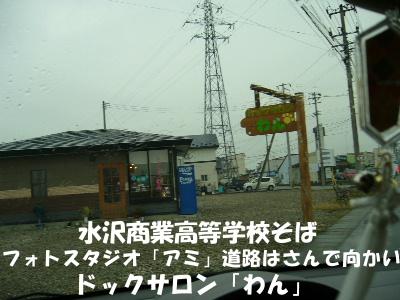P1030451.jpg
