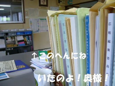 P1090170.jpg