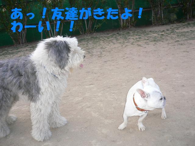 20070320121851.jpg