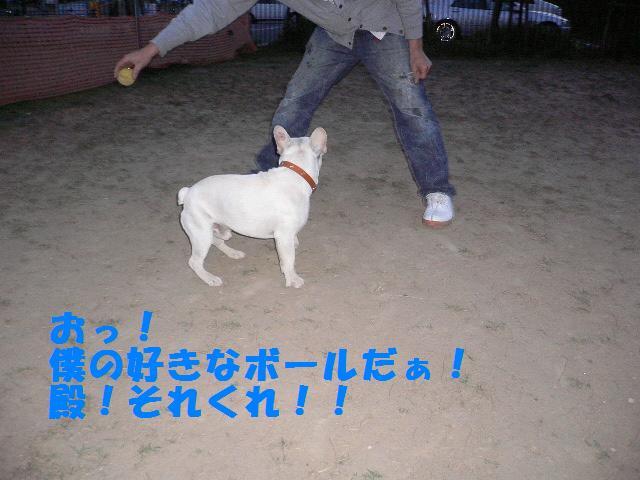 20070320121946.jpg