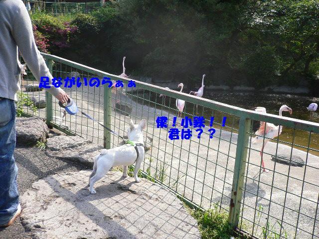 20070510125340.jpg