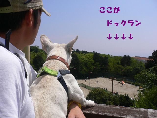 20070511121042.jpg