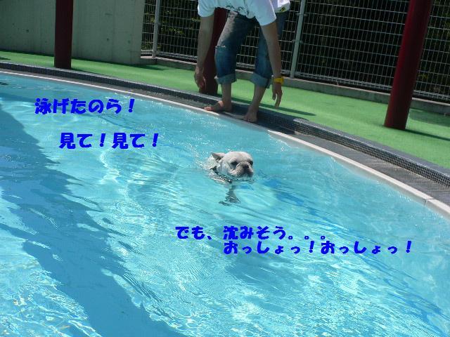 20070511122135.jpg
