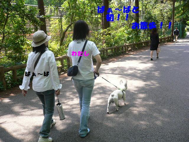 20070512123104.jpg