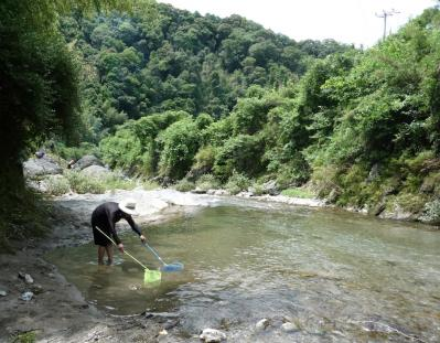 海草郡紀美野町 三尾川で遊び2011-04