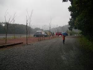 雨のサイト