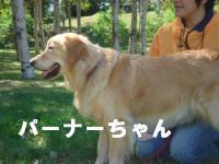 20060924015729.jpg