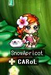 snowapricot.jpg