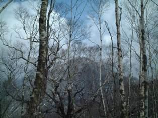 6合目から見る山頂