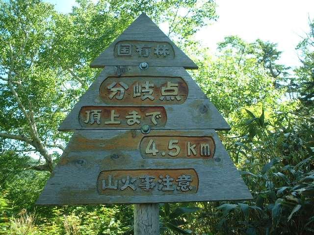 森林管理署職員の手作り看板