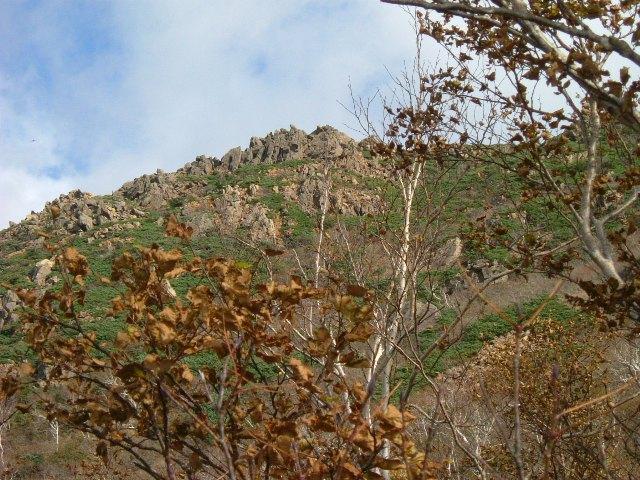 ヌカビラ岳山頂付近