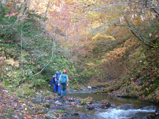 紅葉の松倉川