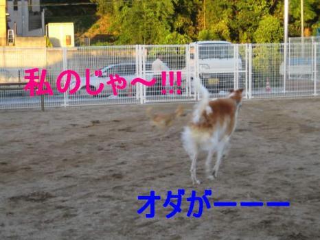 IMG_1579.jpg