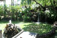 ウィローズ内池