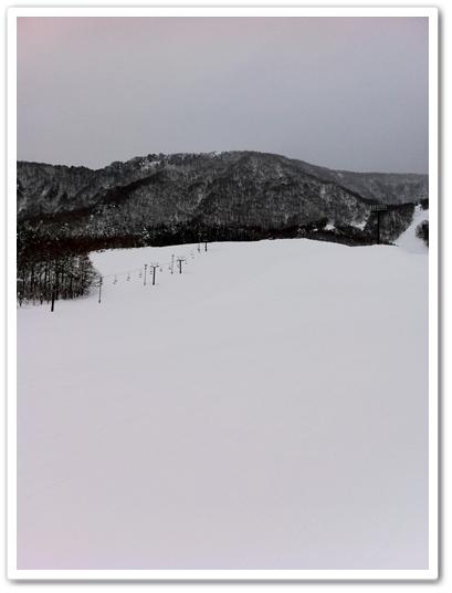 20120108-7.jpg