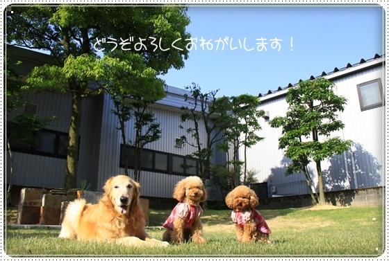 2011,5,19お誕生日13
