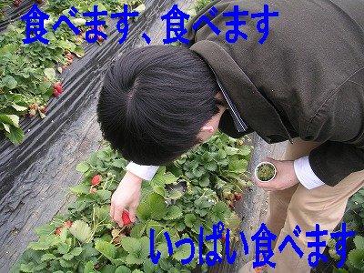20070401111036.jpg