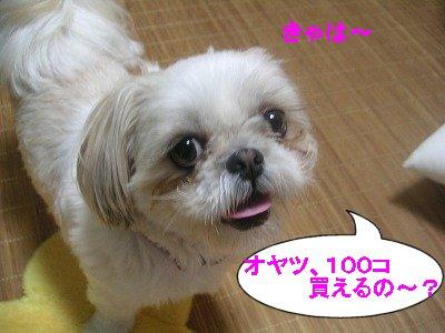 20070704195131.jpg