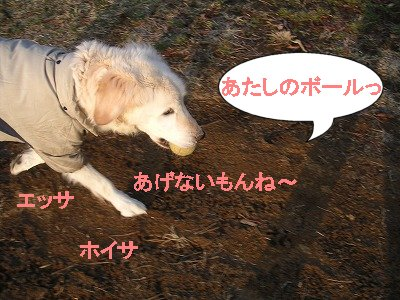 PICT00072006.6.25.jpg