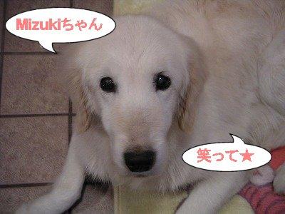 PICT02102006.12.29.jpg