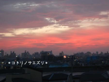 07.8.1.jpg