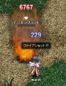 20060525133807.jpg