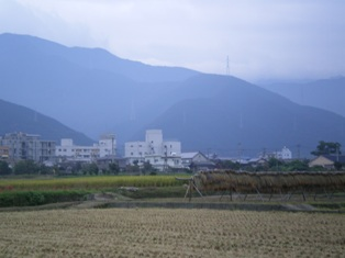 shikotyu1-14.jpg