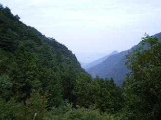 shikotyu1-3.jpg