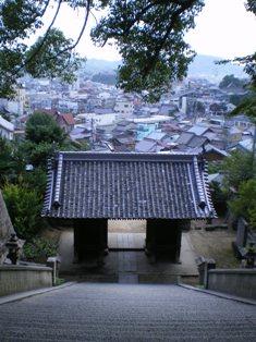 shikotyu2-10.jpg