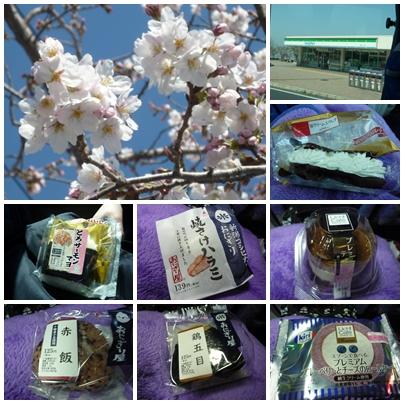 高速バスと神戸の桜