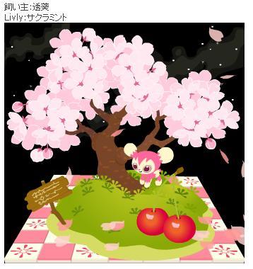 桜がいっぱいvv