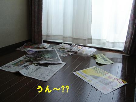 1DSC01122.jpg