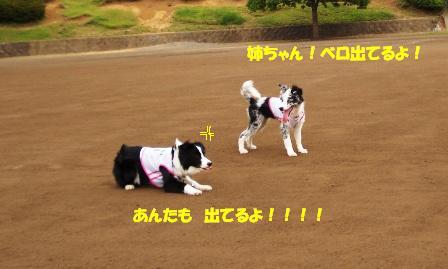 20070624183634.jpg