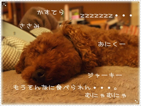 2011 05 27_17211