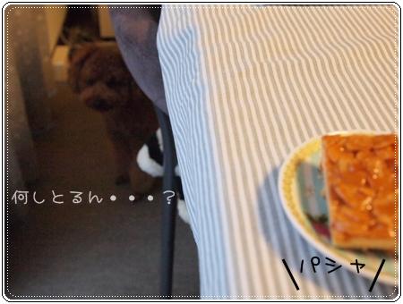 2011 07 22_0099