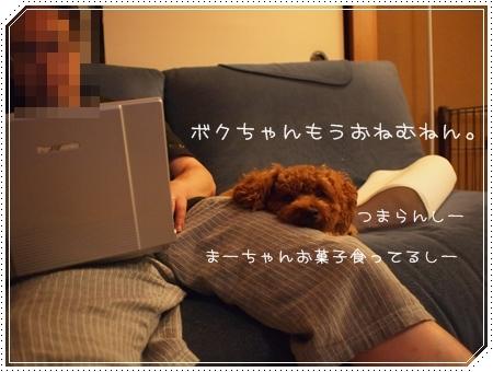 2011 07 27_01558