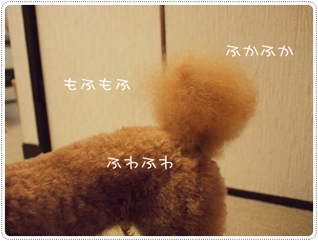 2011 07 29_0150